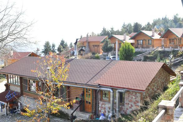 houses585x392